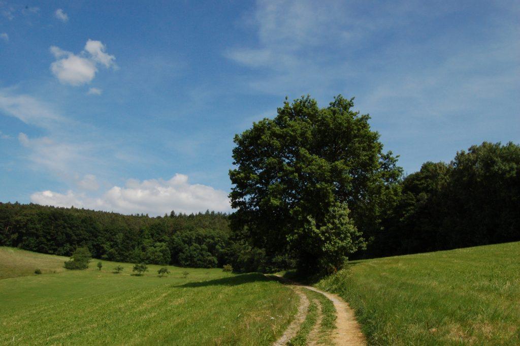 Impressionen Odenwald